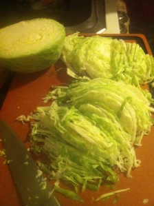 The cabbage that started this whole thing, shredded and ready to go