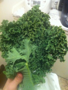 Kale that is somehow curly in a different way