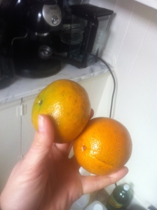 Honey orange is on the left. They really are very sweet.